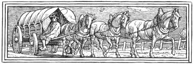 Horse-Pattern