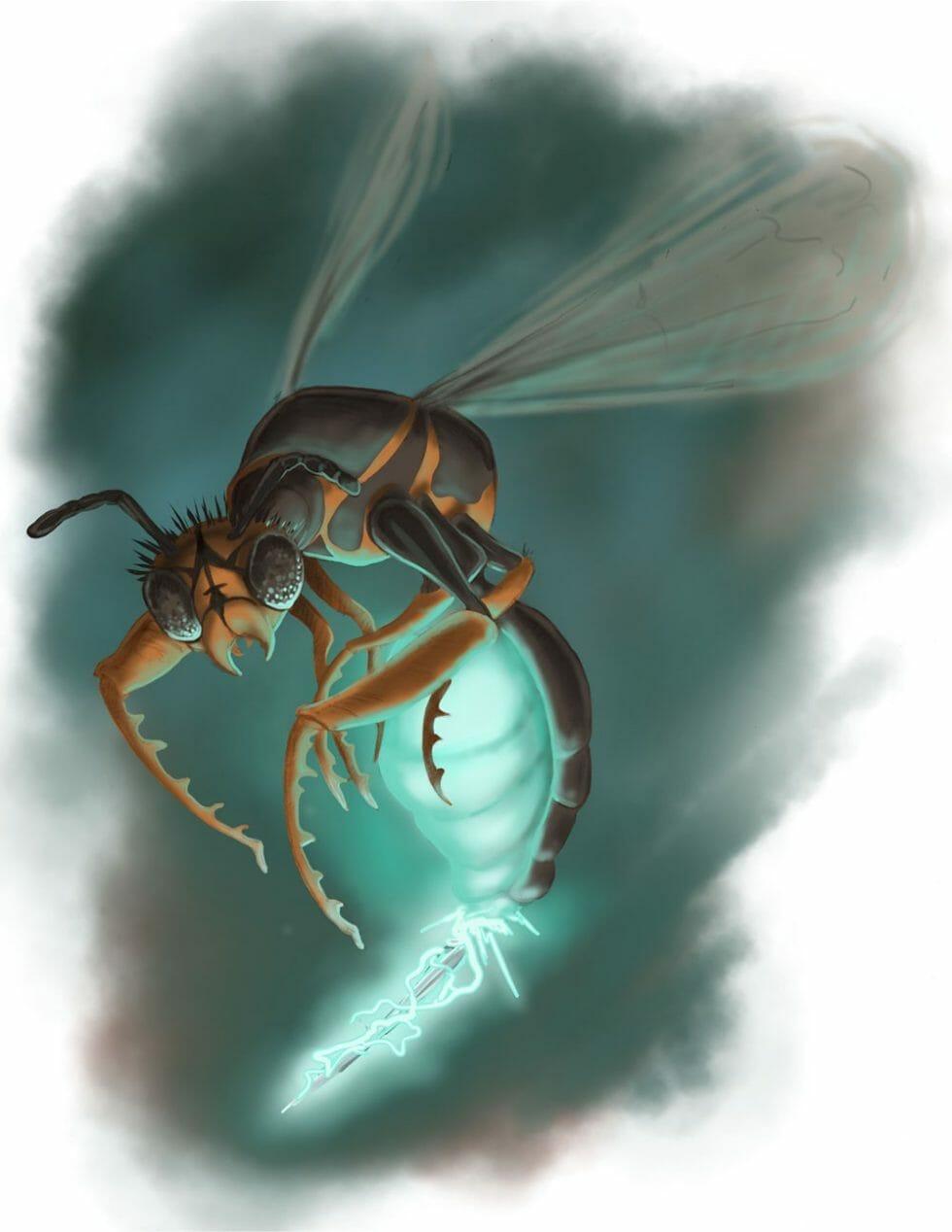 Final-Wasp-C