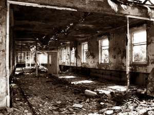 collapsing slaughterhouse