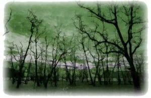 Blighted Tree Spirits Haunt