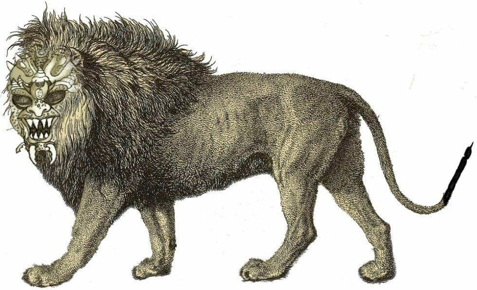 Gregaria Sphinx